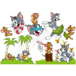 Tom and Jerry T Shirt Iron on Transfer Decal #56