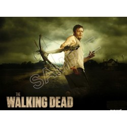 Walking Dead Daryl Dixon T Shirt Iron on Transfer Decal #2