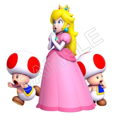 Super Mario Bros Princess Peach And Toads T Shirt Iron On