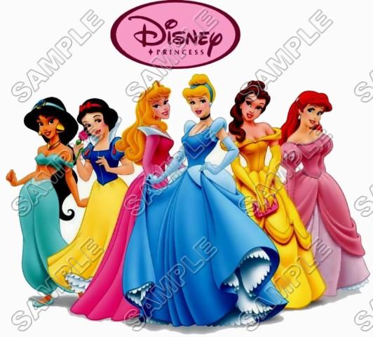 Disney Princess T Shirt Iron On Transfer Decal 17
