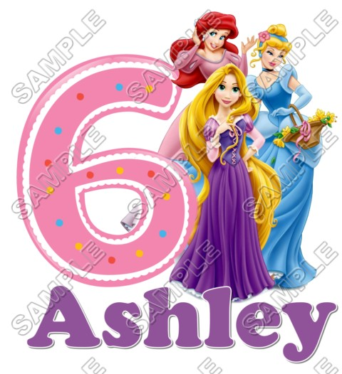Disney Princess Tangled Birthday Personalized Custom T Shirt Iron On Transfer Decal 28